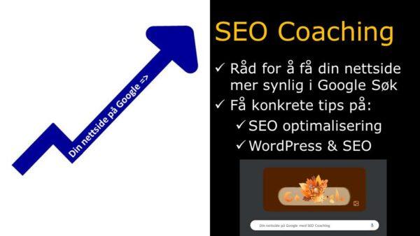 PDF med blå pil hvor det står din nettside på Google og SEO Coaching